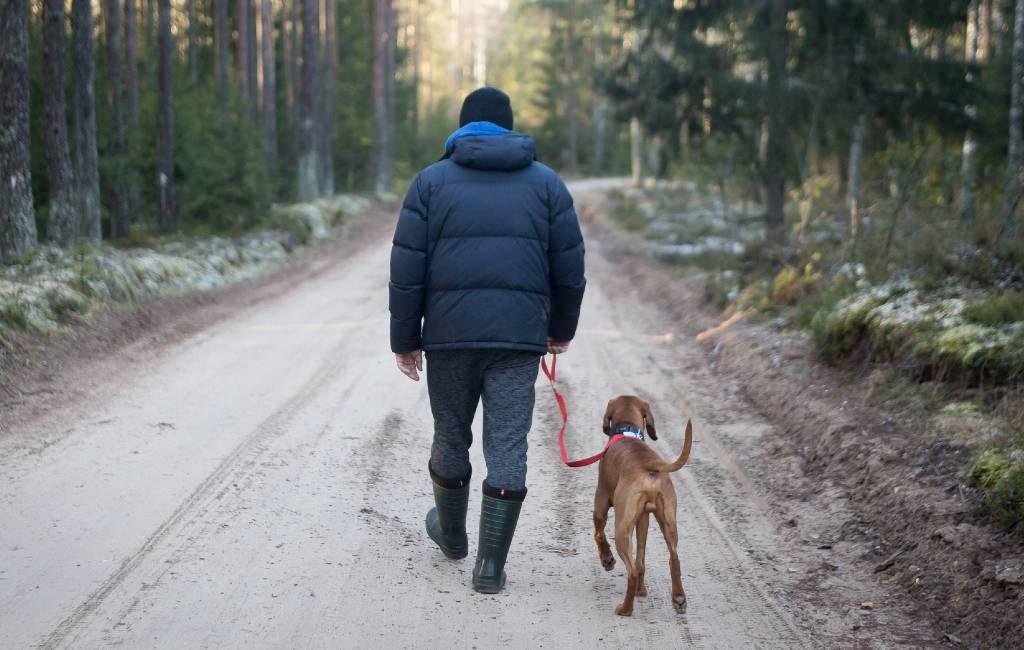 Consejos, caminar o conducir con la nieve